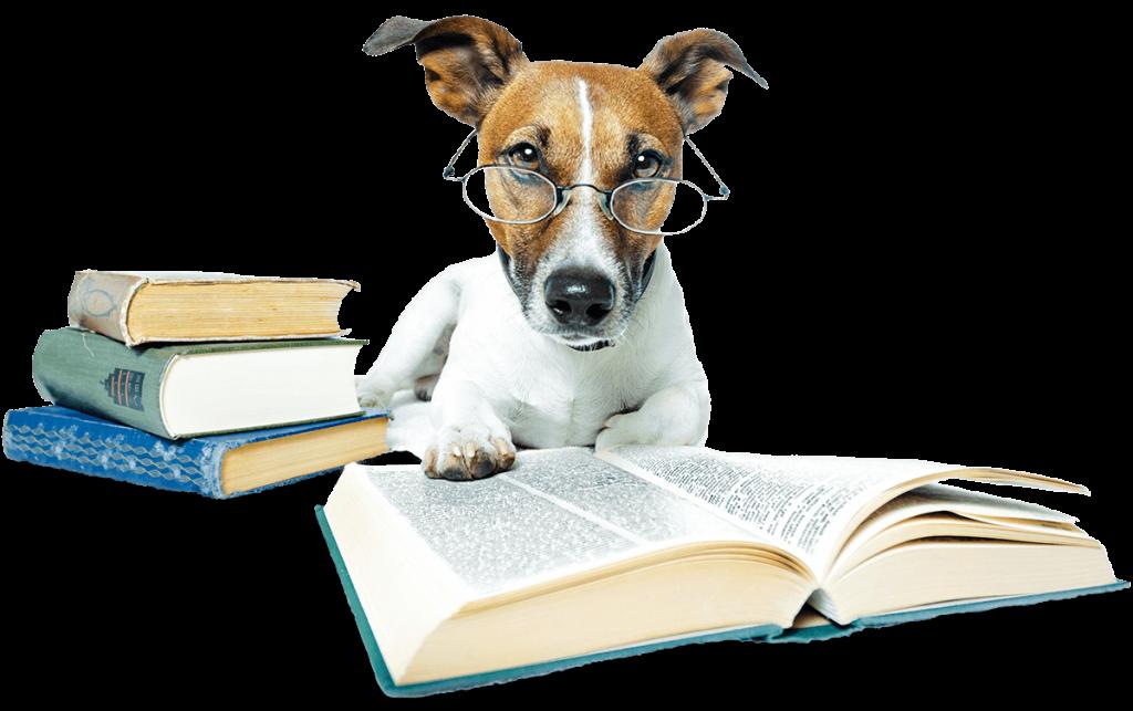 Hundeblog Wissen - Fürstenmahl