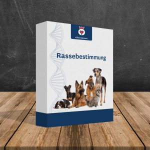 Rassenbestimmung für Hunde